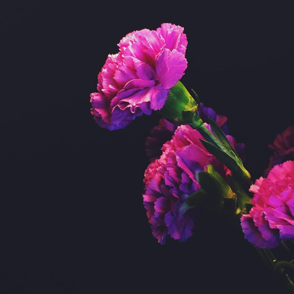 EmanuelVargas02-Flowers.jpeg