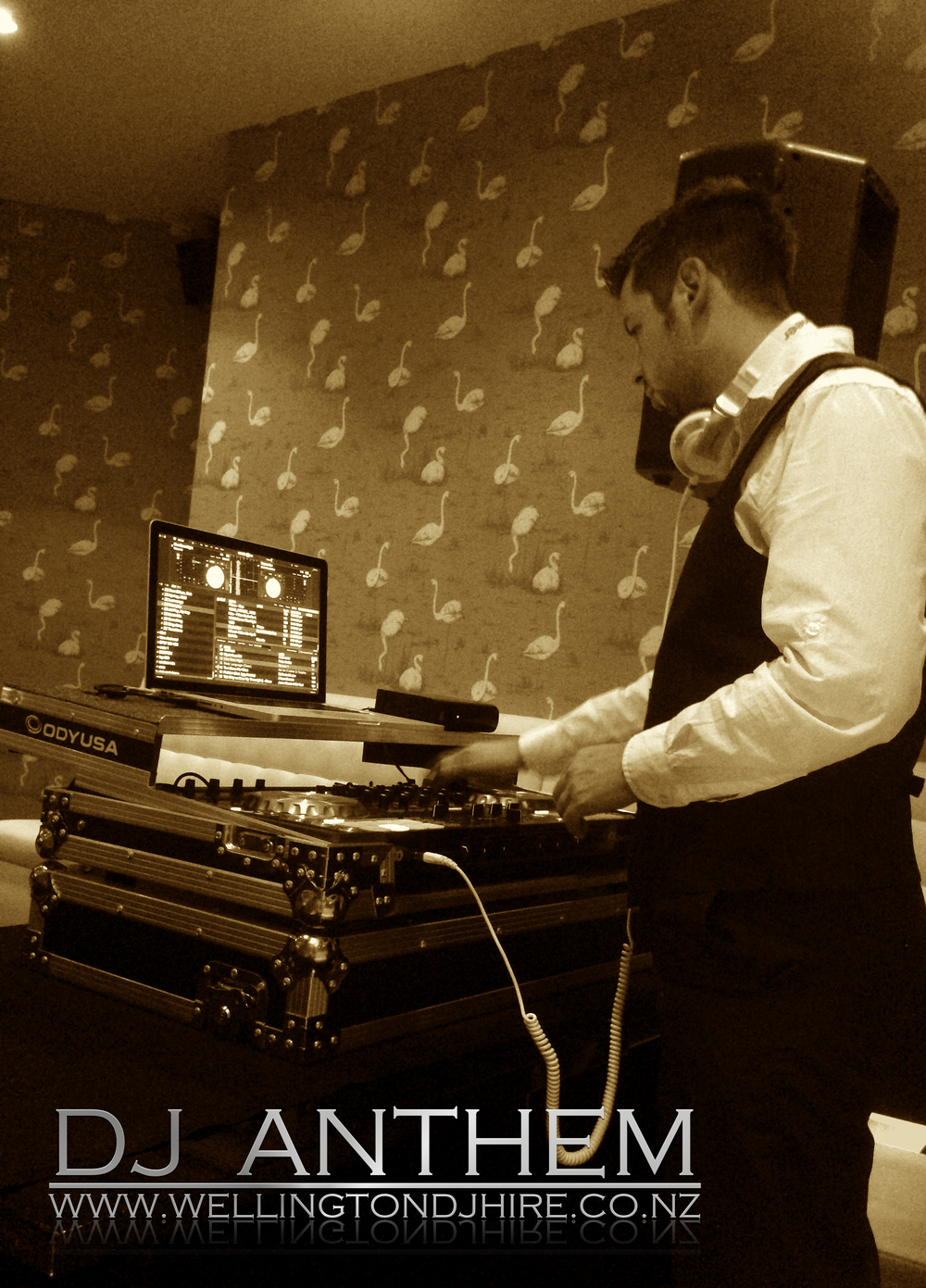 DJ Anthem Working at a private party.jpg