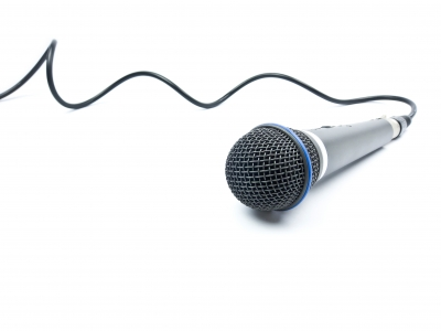 Microphone lead long.jpg