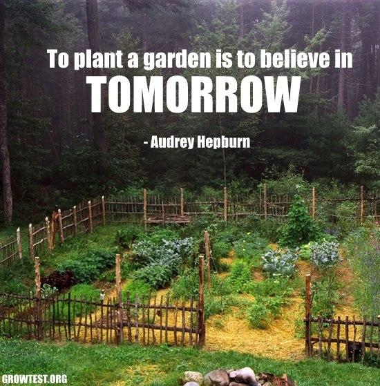 Plant a Garden.jpg