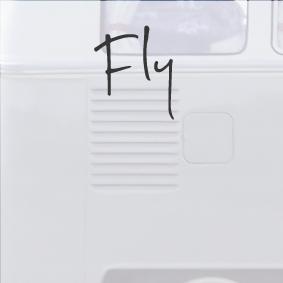 PIC8-Fly.jpg