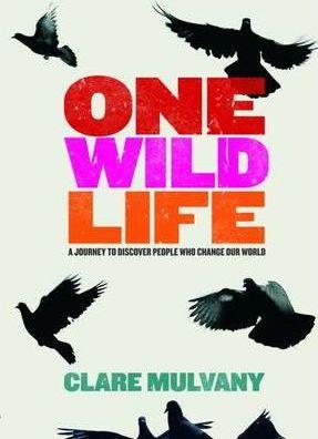one wild life photo.jpg