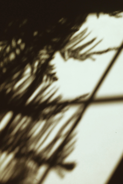 shadowtable.jpg