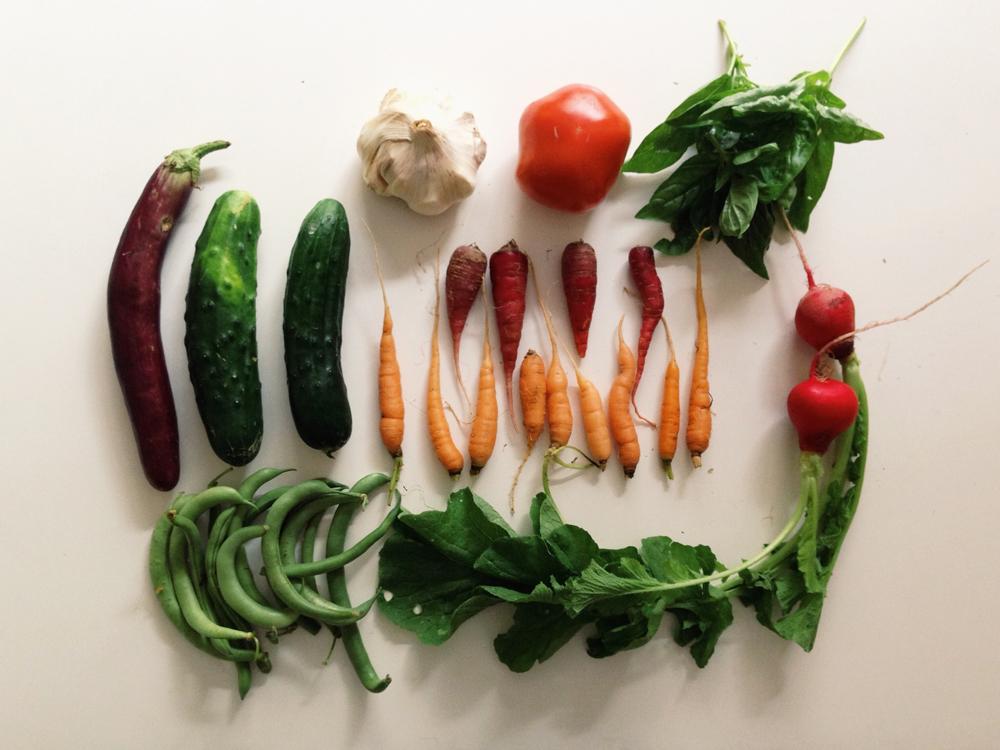 veggiesorganized neatly.jpg