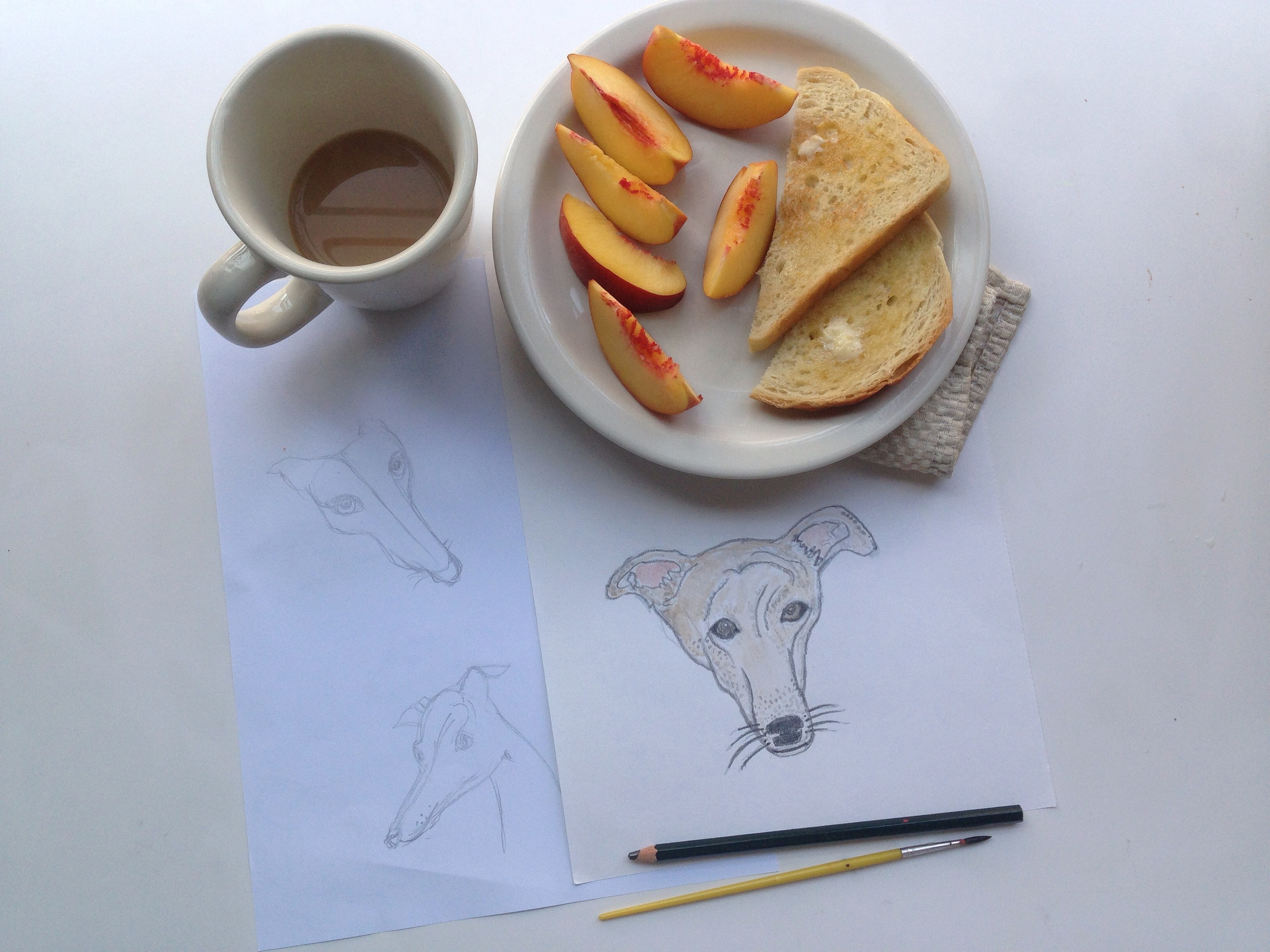 robin the greyhound | year of creative habits