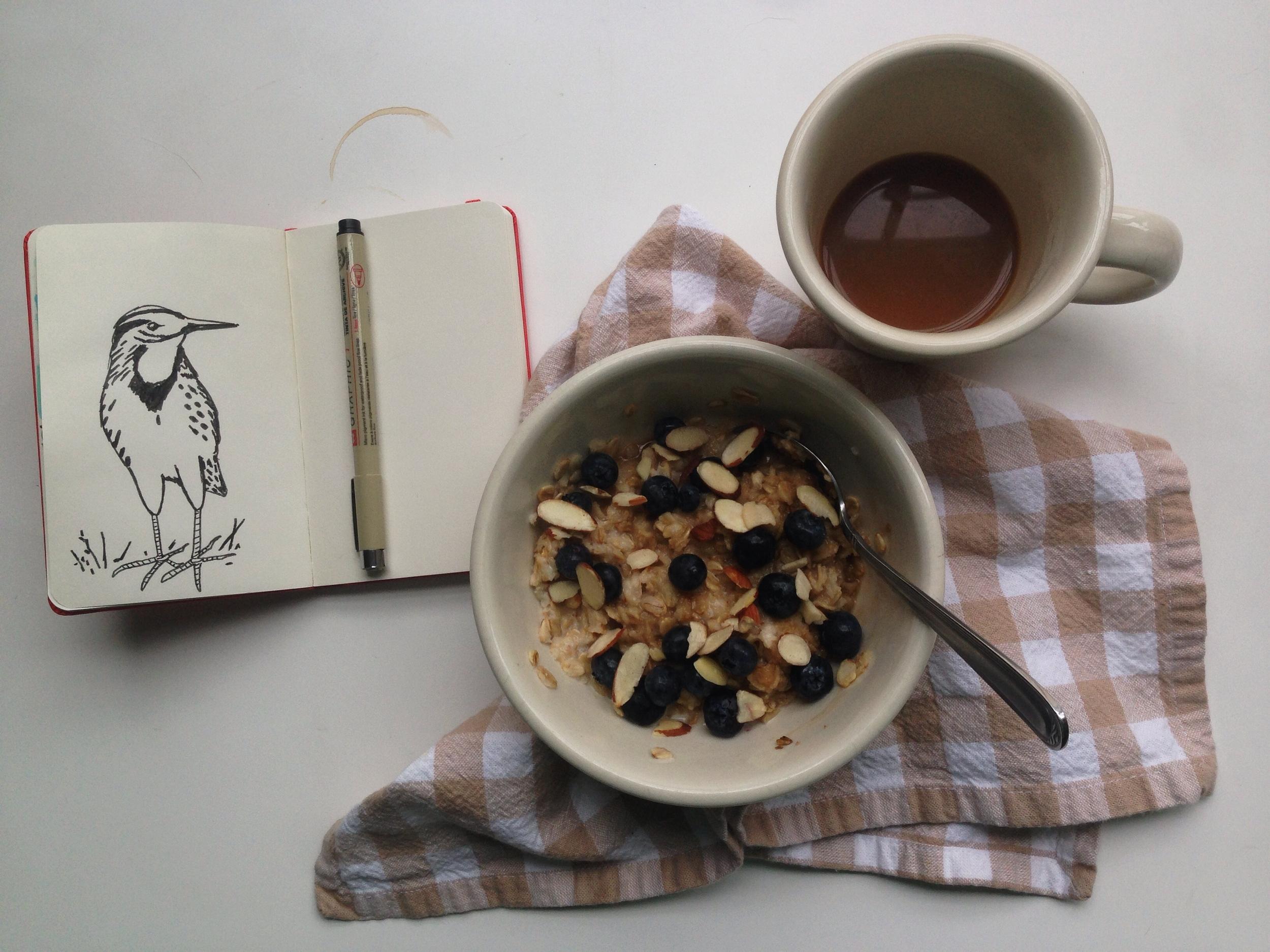 meadowlark | year of creative habits