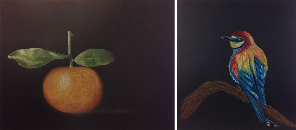 left:  day 100 colored pencil on black paper piece. It has now become one of my favorites. right: day 25 this was my second colored pencil bird on black paper. I really first learned about surrender and trust with this piece as it takes many layers of the colored pencil before it starts to come together and then suddenly it transforms from awkward and ugly to amazing.