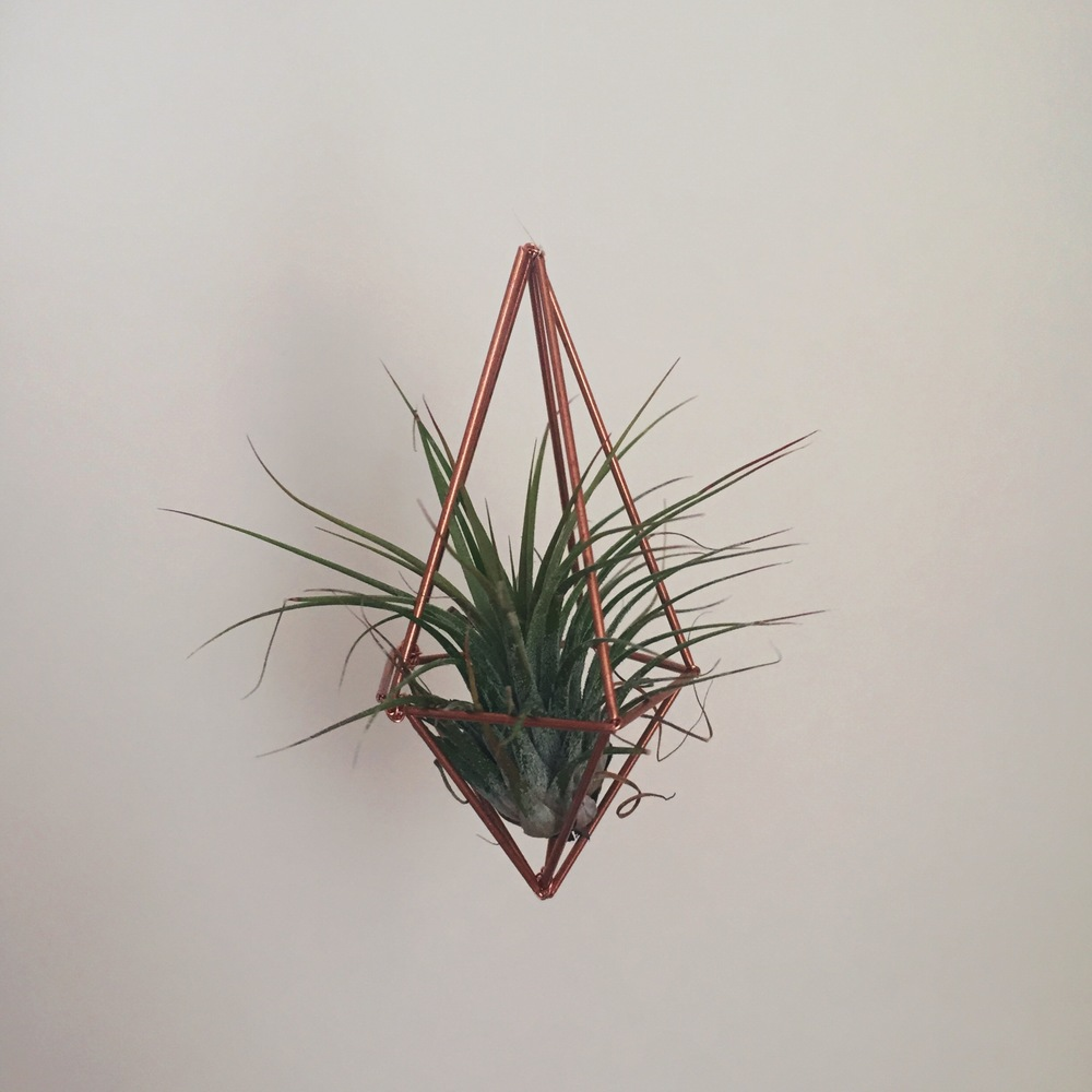 crystal moody | geometric planter
