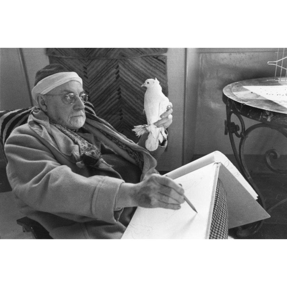Matisse drawing his favorite dove