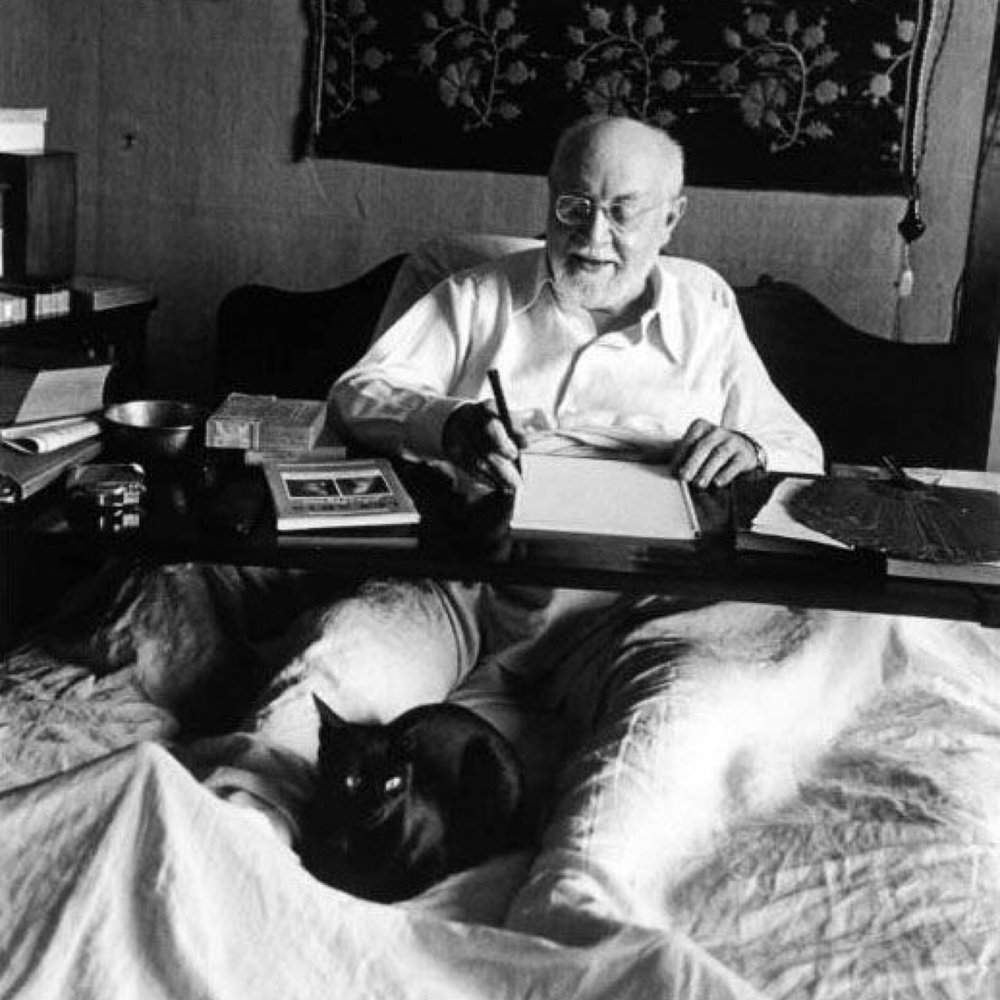 #deadartistsociety | Matisse