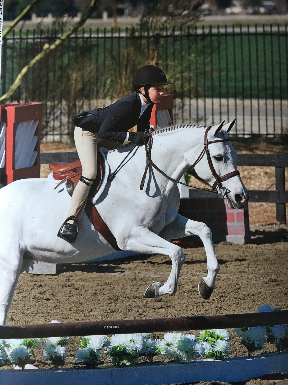 Lucia and Salt Water Taffy Champions Short Stirrup Eq