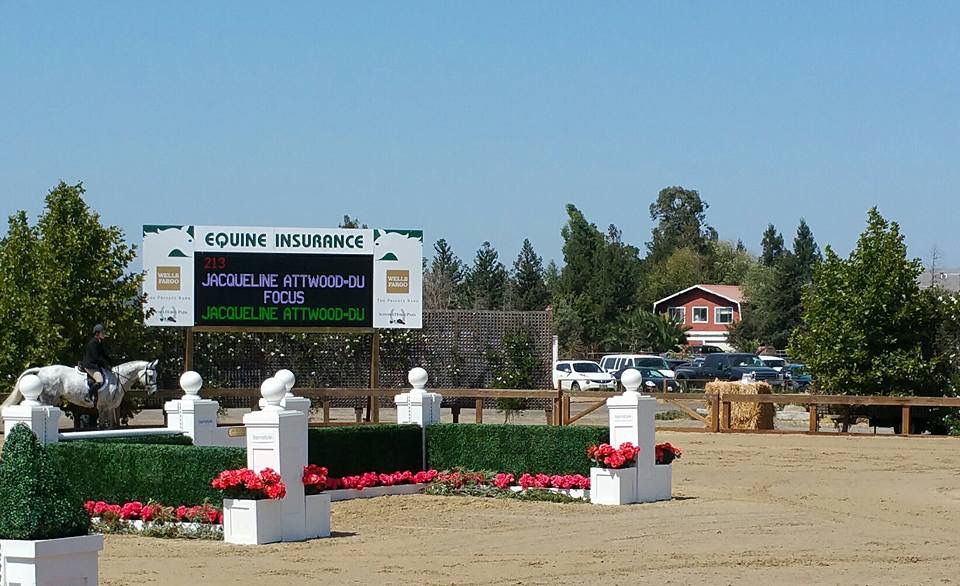 First horse show for Jackie and Focus!