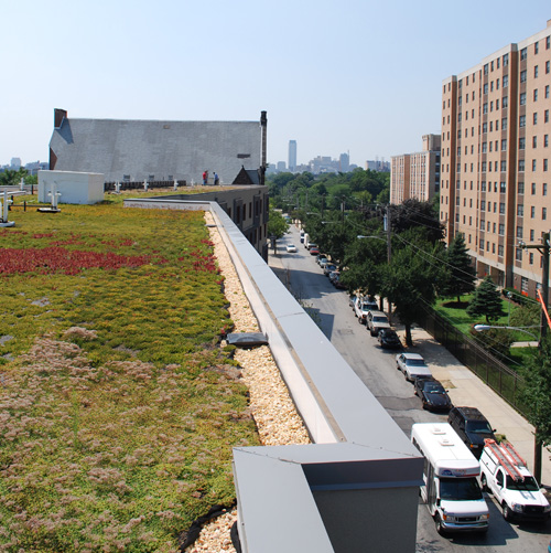 green_roof.jpg