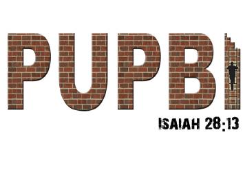 PUPBI.png