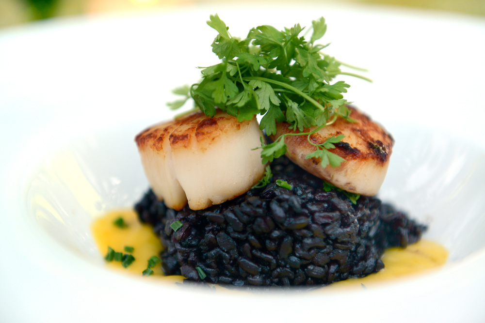 Plated Scallop Forbidden Rice.jpg