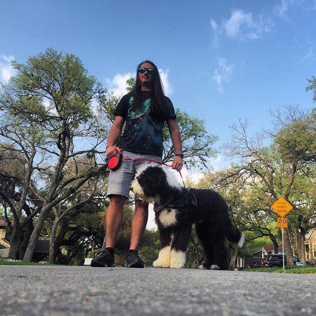 Takin' a big Texas muppet on a walk