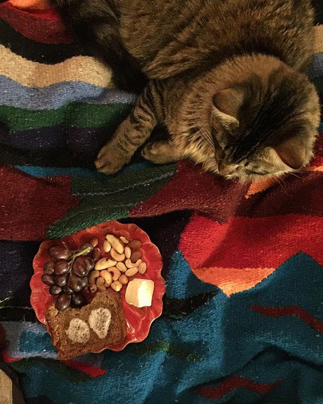 Kitty picnic!