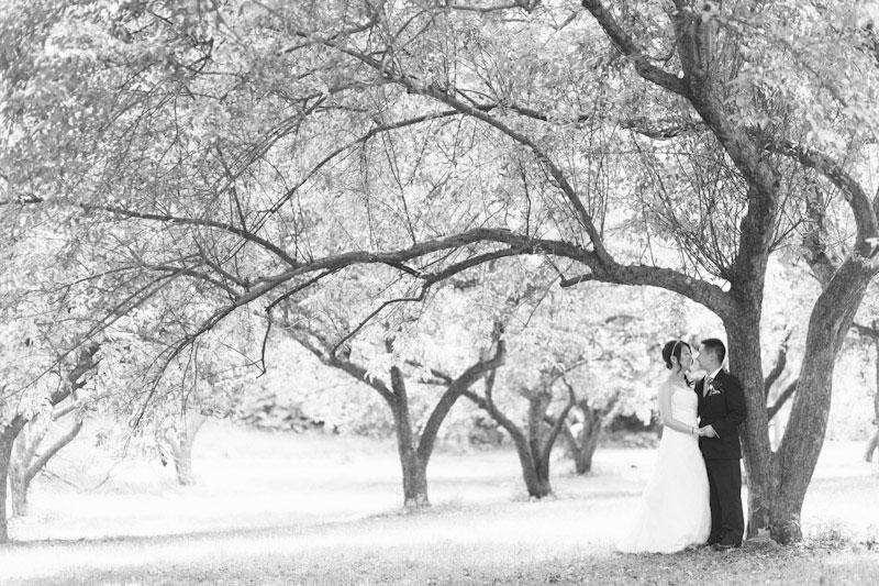 Stephanie lam wedding 0008