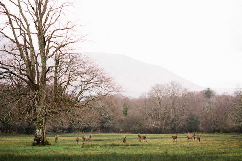 Ireland 2012 0025