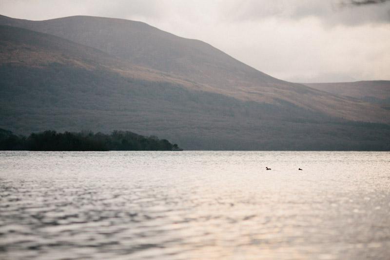 Ireland 2012 0028
