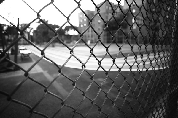 fences-002.jpg