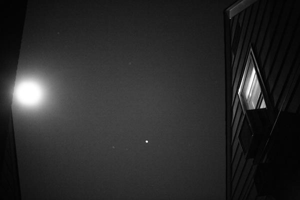 moonlight-003.jpg