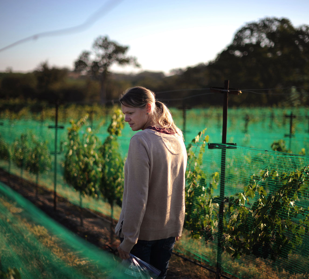 Wonder-Women - 10 Female winemakers to watch