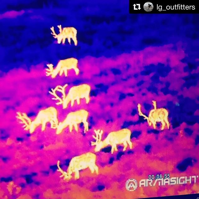 #Repost @lg_outfitters with @repostapp ・・・ Thermal .................. #castandblast #outdoors #thermal #flir #mentorship #westernhunting #technology #inovation #puravida #elk #wow