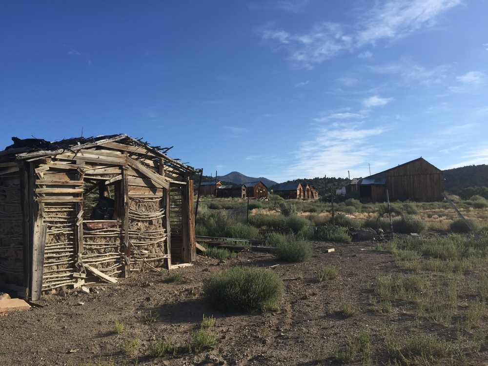 nevada homestead