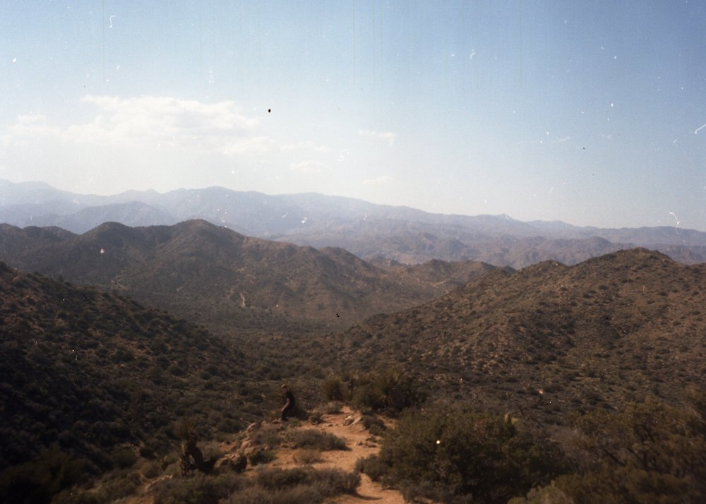 View from the top of the mountain.  Shot with Kodak Duaflex IV (Medium Format) on Kodak Portra 400 film.