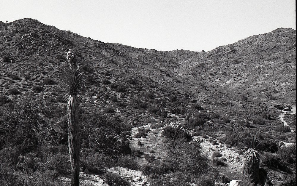 View from the descending hike down the backside of the mountain. Shot on Practika MTL3 (35mm) using Ilford Delta 100 film.