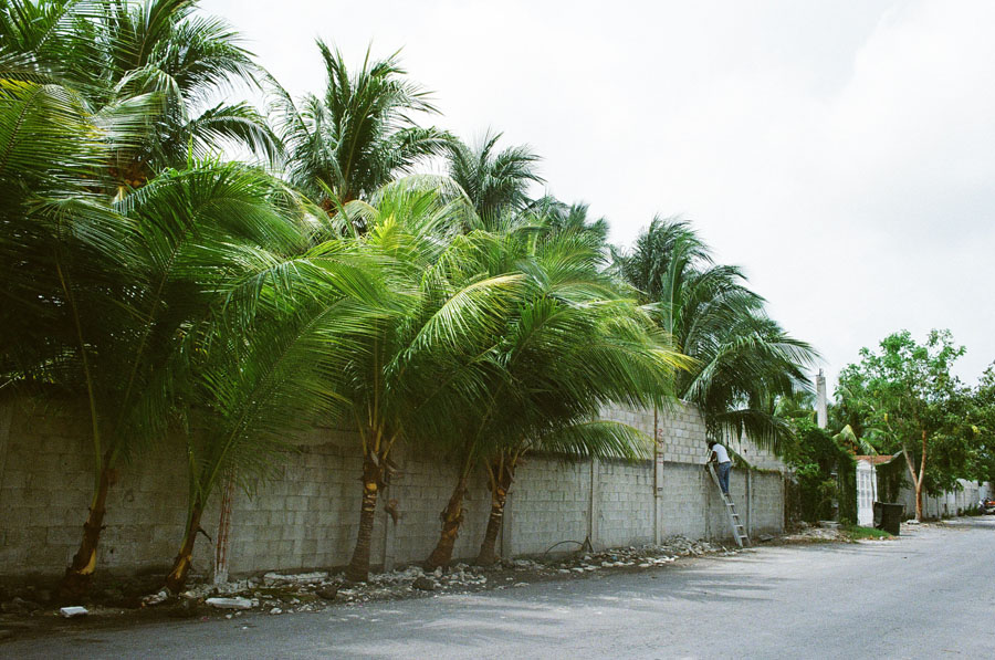 35mm film Cozumel/Quintana Roo by Katie Corley