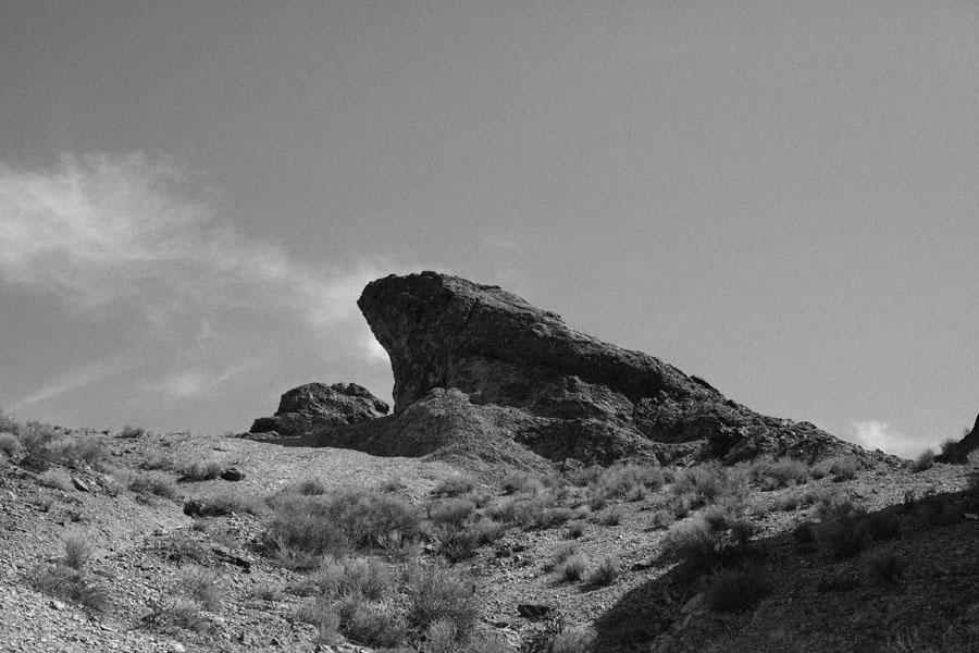 wild west 2014 1290-2.jpg