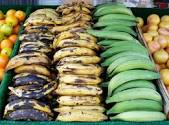 "You can see here that Plantains come in a variety of ""ripenesses"". Green are a great form of resistant starch. As they get more ""ripe"" and black, they develop there sweetness and develop a much softer texture."