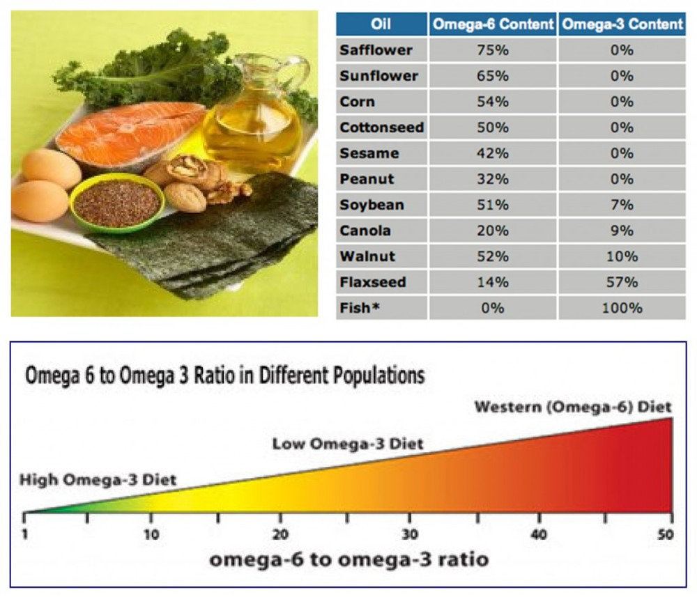 This is a great visual that helps point out how much omega:6 is in our diet