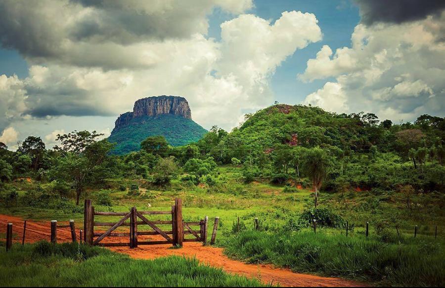 Paraguayfotografia (curated).png