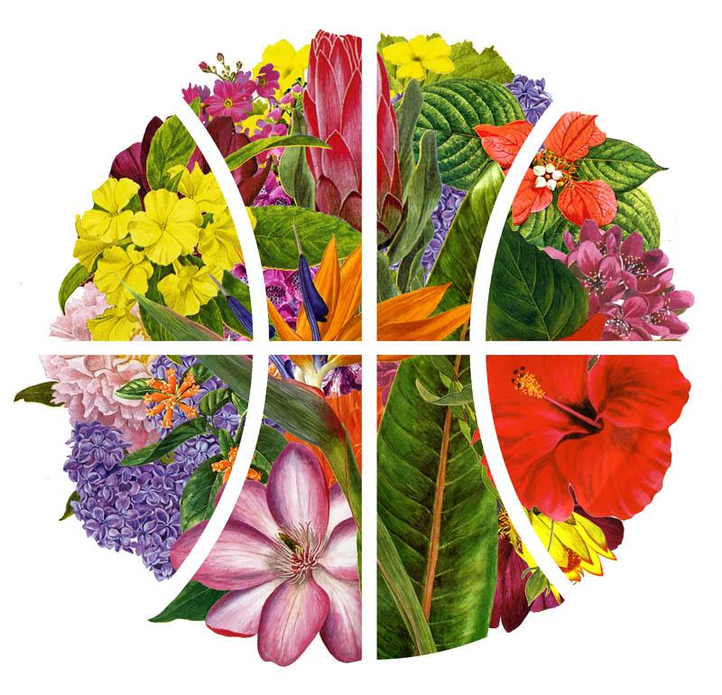BBall-Flowers-Final.jpg