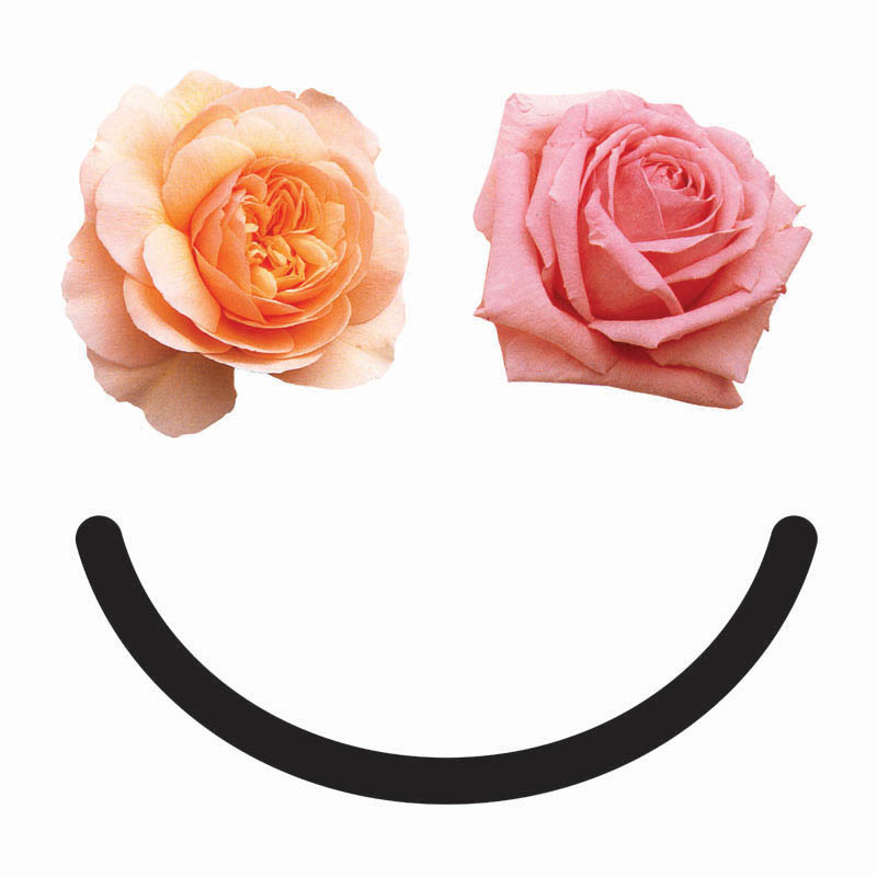 Elms-Smile-Final.jpg