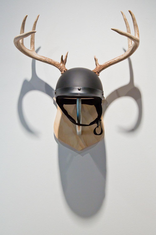 White_antlers.jpg