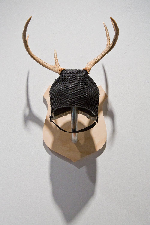Small_antlers.jpg