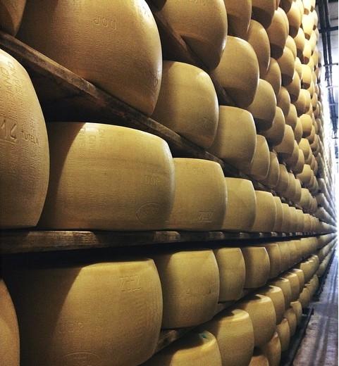 Parmigiano Aging in Emilia Romagnia