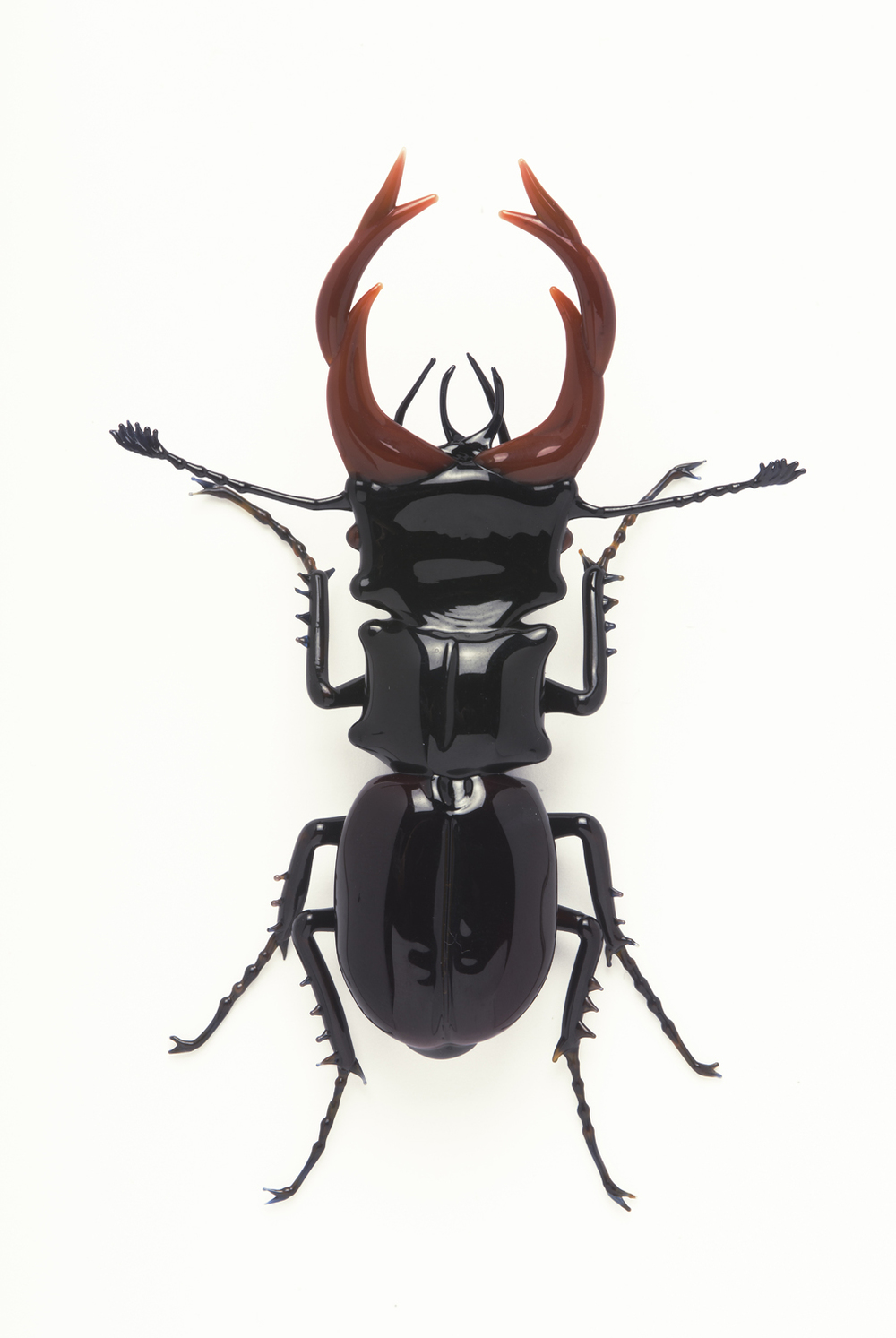 "Vittorio Costantini,  Family: Lucanidae, ""Lucanus Ceruus""  (2005, soda-lime glass, 3 7/8 x 2 5/8 x 15/16 inches), VC.25"