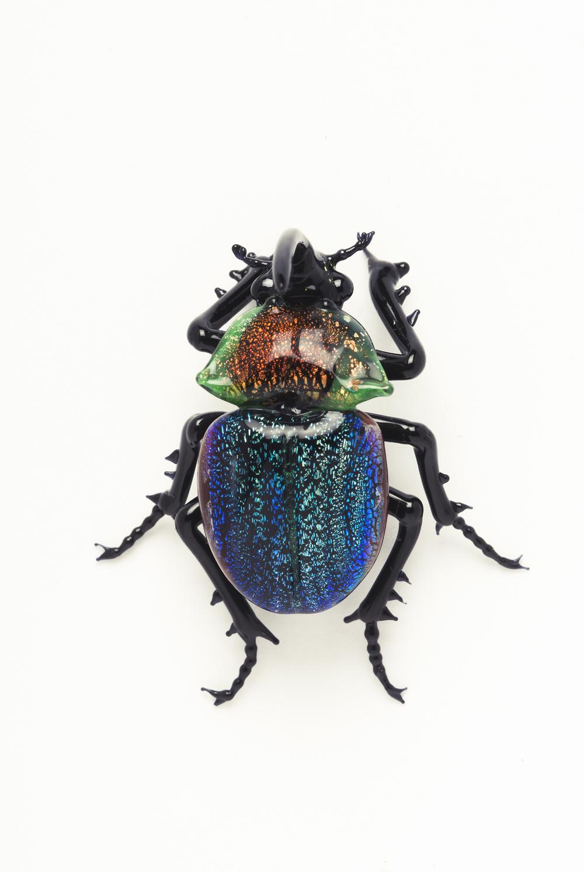 Vittorio Costantini,  Family: Scarabeidae Scarabaeidae Phanaeus igneus floridanus   (2005, soda-lime glass, 1 3/8 x 1 1/4 x 5/8 inches), VC.47