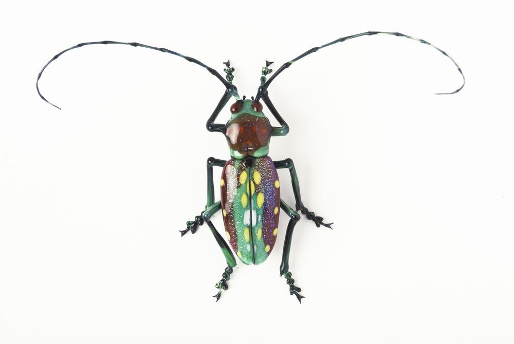Vittorio Costantini, Cerambycidae Laminae Sternotomis variabilis (2005, soda-lime glass, 3 x 1 7/16 x 13/16 inches), VC.62