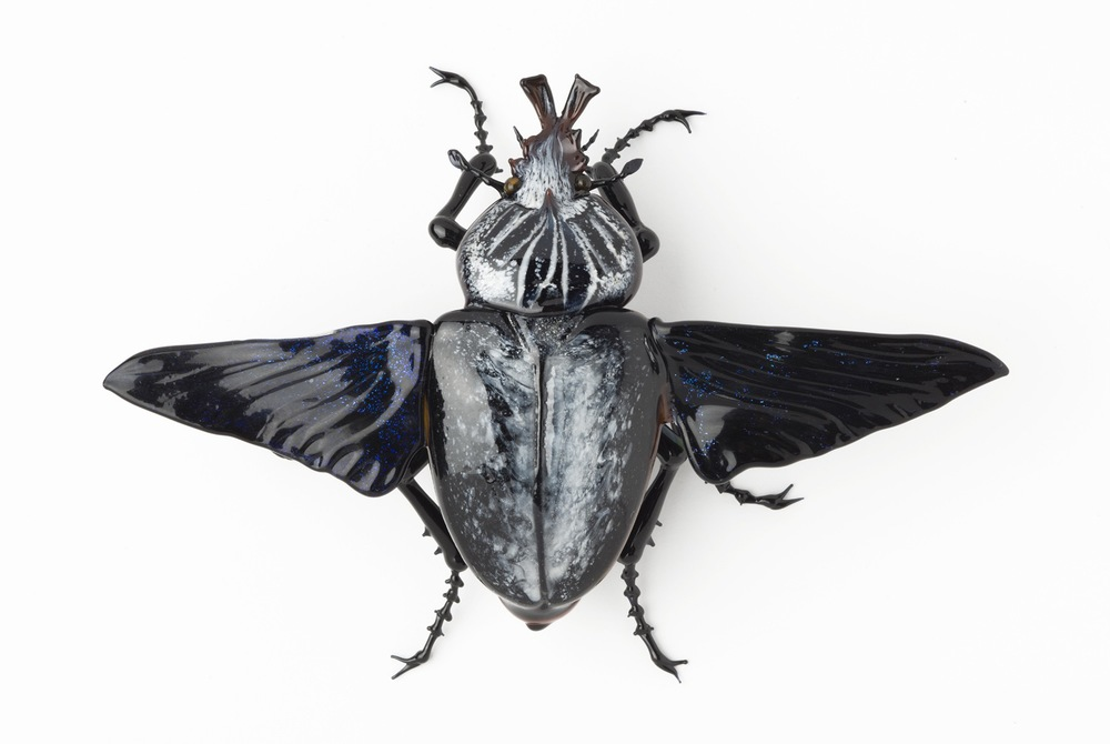 Vittorio Costantini,  Goliath Beetle with open wings  (2005, soda-lime glass, 3 1/4 x 4 5/8 x 1 1/8 inches), VC.69