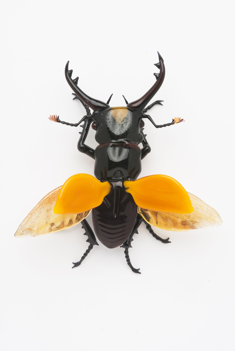 Vittorio Costantini,  Stag Beetle, open wings  (2006, soda-lime glass, 3 3/8 x 3 x 1 1/4 inches), VC.72
