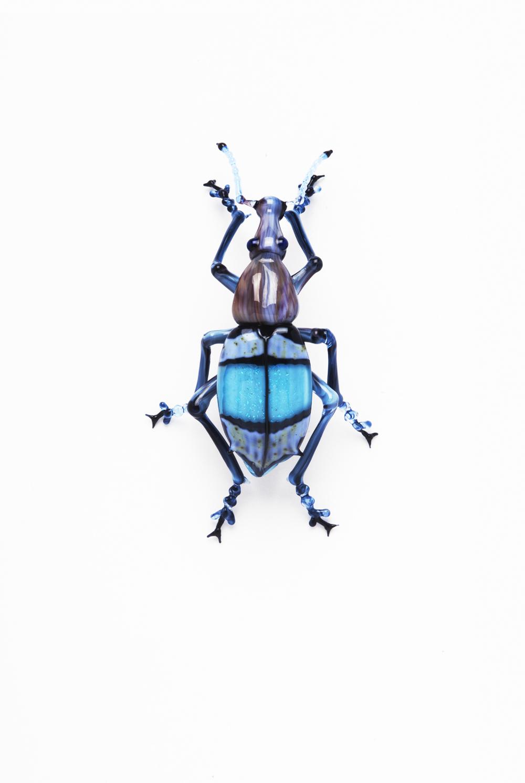 Vittorio Costantini, Elateridae chalcolepidius limbatus (2007, soda-lime glass, 2 x 1 1/8 x 1/2inches), VC.124