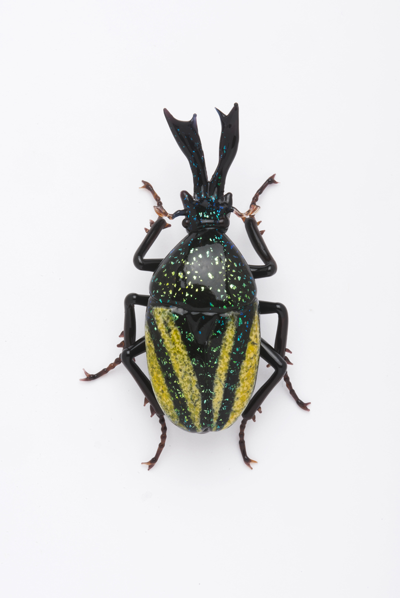 Vittorio Costantini,  Eudicella Scarbaeidae  (2009, soda-lime glass, 2 5/8 inches), VC.172