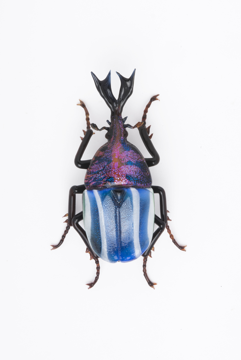 Vittorio Costantini,  Eudicella Scarabaeidae  (2009, soda-lime glass, 2 5/8 inches), VC.173