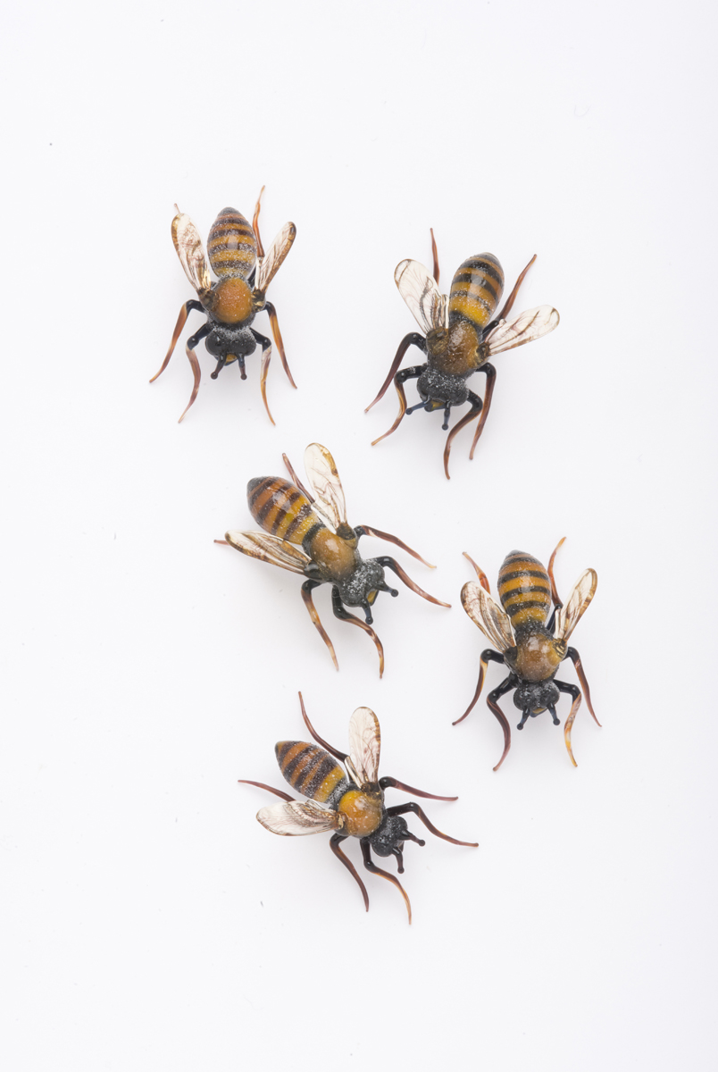 Vittorio Costantini,  Lot of five bees  (2009, soda-lime glass, 1 inches), VC.246.1-.5